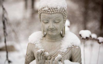 Nella vita non sento il bisogno di un guru